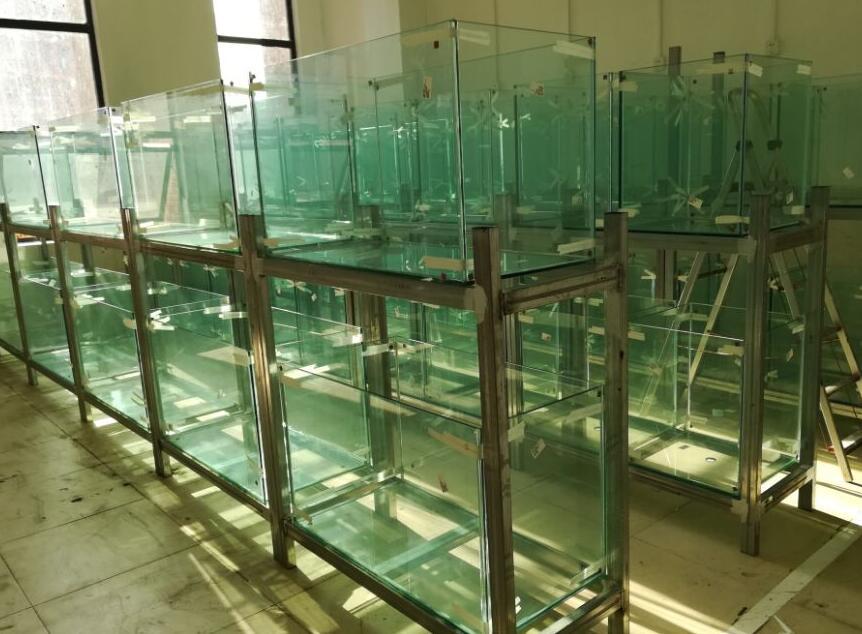 贵大鱼缸厂家